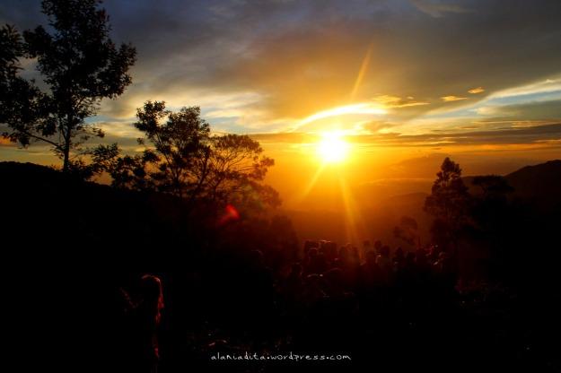 Hi, Sunrise!