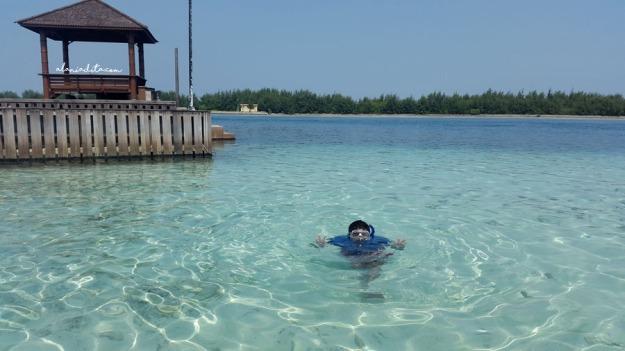 Pulau Tak Bernama 1
