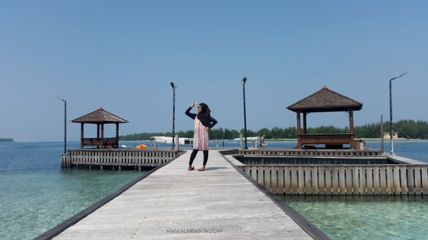 Pulau Kelapa copy